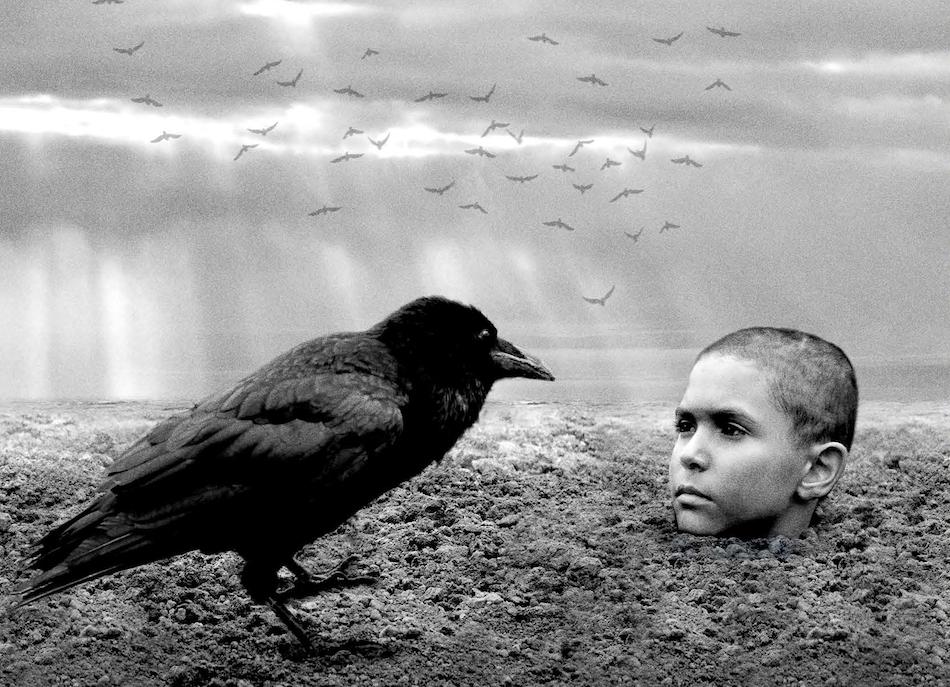 Malowany Ptak Going. top filmy 2019